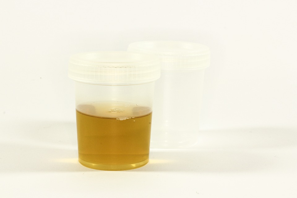 How to Use the Best Synthetic Urine to Pass a Drug Test